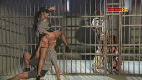 Two couples fucking on the different sides of the bars, prison XXX
